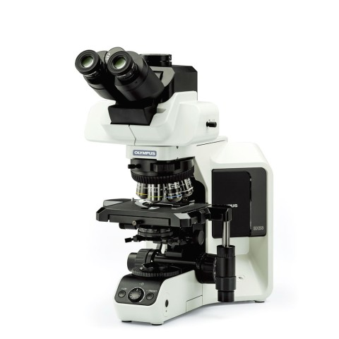 BX53 LED Upright Microscope